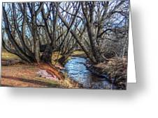 Trail By Fountain Creek Winter Greeting Card