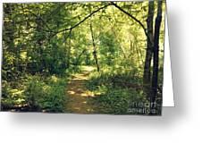 Trail Of Hope II Greeting Card