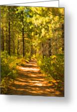 Trail Through The Woods Greeting Card