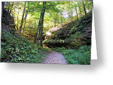 Trail To Devil's Punch Bowl Wildcat Den Greeting Card