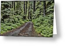 Trail To Jaw Bone Flats Greeting Card