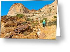 Trail Up To The Tanks From Capitol Gorge Pioneer Trail In Capitol Reef National Park-utah Greeting Card