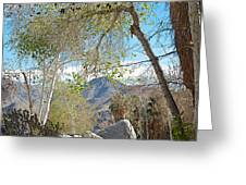 Trailhead Area In Andreas Canyon In Indian Canyons-ca Greeting Card