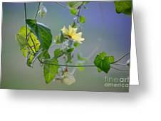 Trailing Vines Greeting Card
