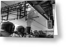 Train At Miaoli Station Greeting Card