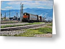 Train In The Mile High Greeting Card