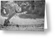 train track change in infrared light in the forest in Netherlands Greeting Card