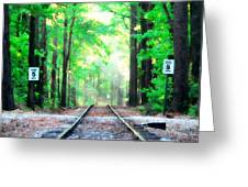 Train Tracks In Forest Greeting Card