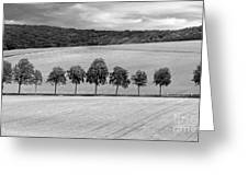 Train With A View Bw Greeting Card