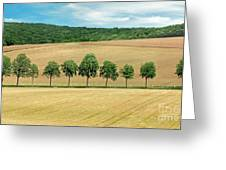 Train With A View Greeting Card