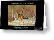 Training To Hunt Greeting Card
