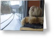 Tram In Winter Greeting Card