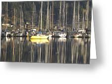 Tramp Harbor Greeting Card