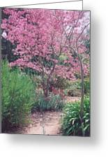 Tranquil Pathway Greeting Card by Robert Bray