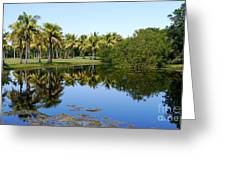 Tranquil Pond Greeting Card