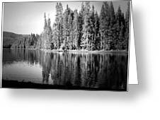 Tranquil Reflection In B And W Greeting Card