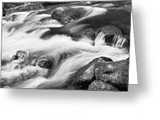 Tranquility In Black And White Greeting Card