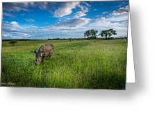 Tranquility On The Plains Greeting Card