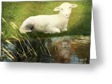 Transformation Lamb Or Lion Greeting Card