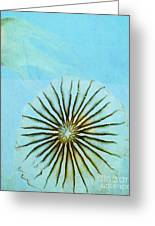 Transparent-sea Greeting Card by Sharon Coty