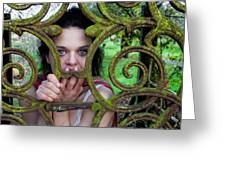 Trapped Greeting Card by Semmick Photo