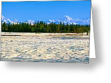 Trapper Creek And Mount Mckinley, Alaska Greeting Card