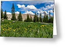 Trappers Lake Meadow Greeting Card