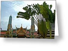 Traveler's Palm At Grand Palace Of Thailand In Bangkok Greeting Card