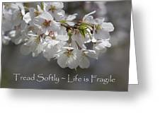 Tread Softly - Life Is Fragile Greeting Card
