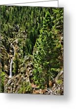 Tree Above Leavitt Falls  Greeting Card