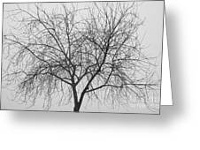 Tree Abstract In Black And White Greeting Card