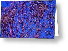 Tree Abstract Purple Blue  Greeting Card