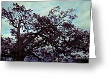 Tree Against Sky Greeting Card