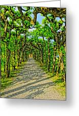 Tree Alley In Castle Park Greeting Card
