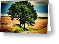 Tree Alone Greeting Card