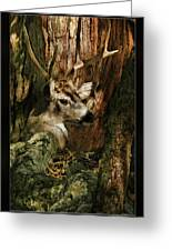 Tree And Buck Greeting Card