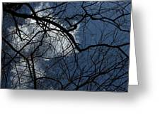 Tree And Clouds Greeting Card