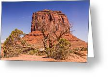 Tree And Elephant Butte Greeting Card
