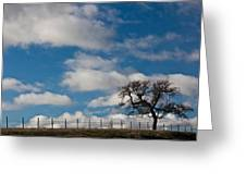 Tree And Fence On A Landscape, Santa Greeting Card