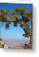 Tree Arch Greeting Card