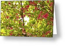 Tree Blossom 1 Greeting Card