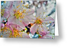 Tree Blossom Greeting Card