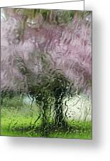 Tree Blossoms In The Rain Greeting Card