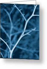 Tree Branches Abstract Cobalt Blue Greeting Card