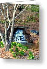 Tree By The Brook Greeting Card