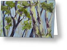 Tree Canopy Greeting Card