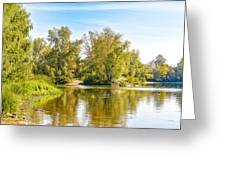 Tree Close To The River Greeting Card