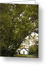 Tree Covered Greeting Card