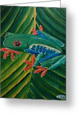 Tree Frog Koi Greeting Card