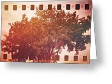 Tree Grunge Vintage Analog Film Greeting Card